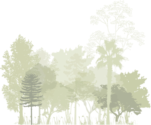 Jardinier paysagiste var le lavandou bormes les mimosas for Jardinier paysagiste 78